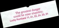 Stupidity_small