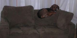 Couchcreole