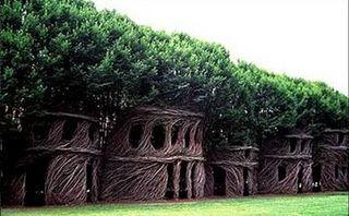 Arborsculp