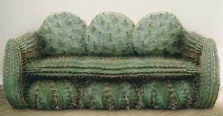 Cactuscouch