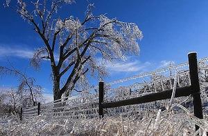 Icestorm