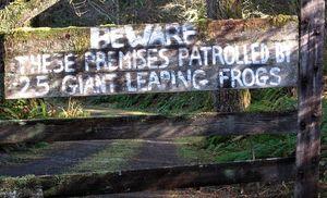 Leapingfrogs