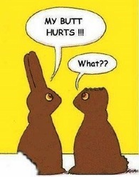 Chocolate_easter_bunnies_my_butt_hurts_what