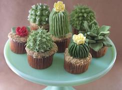 Cactuscup