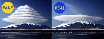 Realfake