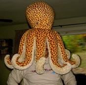 Octopushead