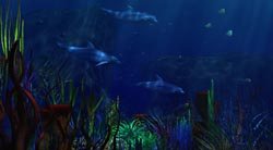 Aquamarine_1