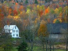 Autumnscene_1