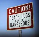 Beachlogs_1