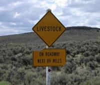 Livestocksign_1