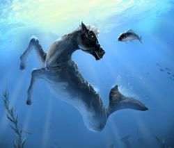 The_seahorse